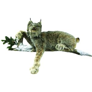 Lynx - Full Body Mount